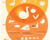 Thanksgiving by the Numbers - Cambro Blog