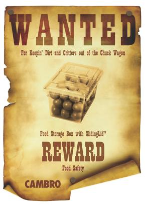 Wanted Poster Food Box