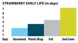 ShelfLIfeTest-Graph-CambroBlog