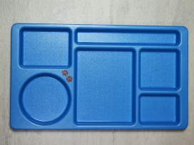 Camwear 2x2 Compartment Tray in Blue (915CW168)